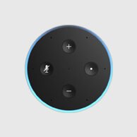 image of an Alexa